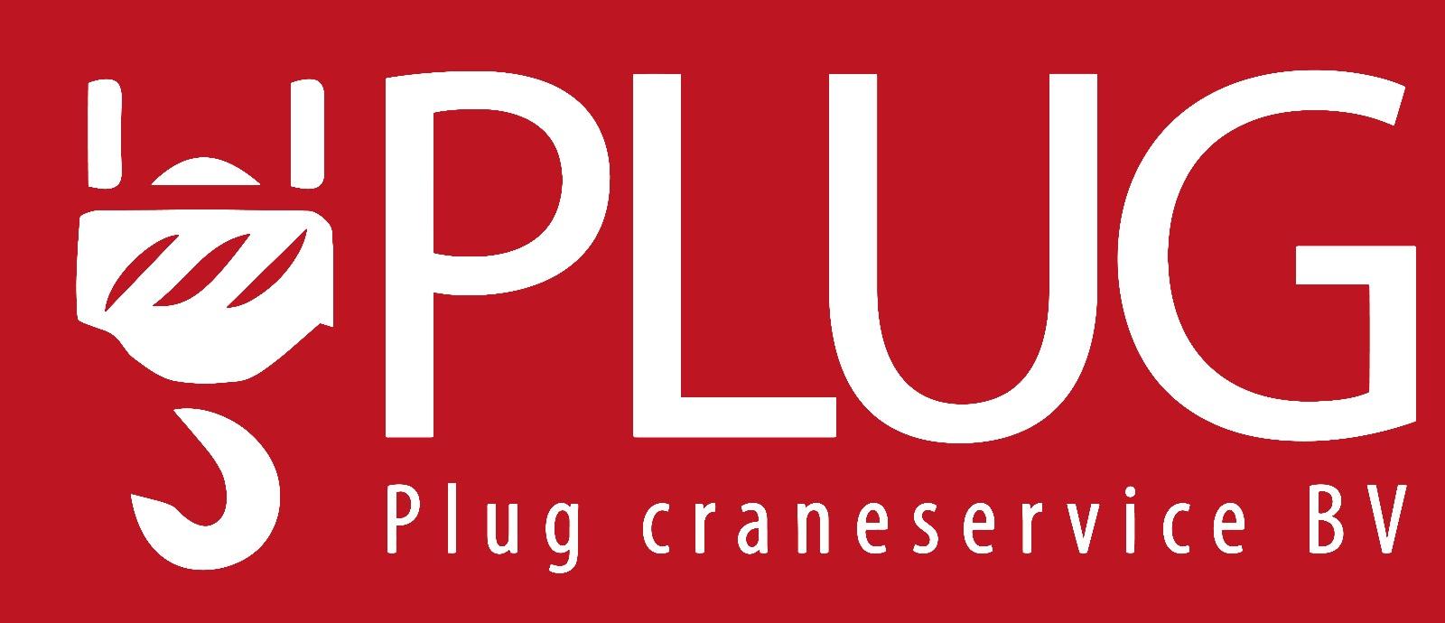 Plug Crane Service